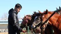 رکوردشکنی سردار آزمون با خرید اسب نیممیلیون دلاری! + عکس